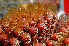 Geglaceerde hagedoorns op een stok. Royalty-vrije Stock Fotografie