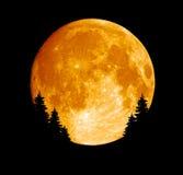 Geglanste volle maan Royalty-vrije Stock Foto