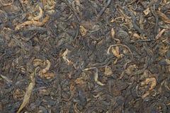 gegorener gepresster schwarzer Tee Stockbild