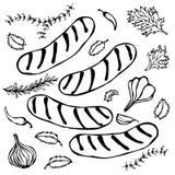 Gegrillte bayerische oder amerikanische Würste mit Chili Pepper, Zwiebel, Knoblauch, Thymian, Rosemary realistische Illustration  Stockfoto