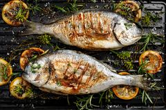 Gegrillte Brachsenfische, dorada Fische mit dem Zusatz von Gewürzen, Kräuter und Zitrone auf dem Grillgrill stockfotos