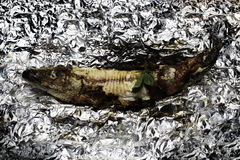 Gegrillte Fische auf Floyd Stockfoto