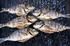 Gegrillte Fische auf Grill Stockfotos