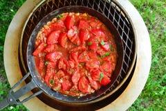 Gegrillte H?hnerfl?gel in der Tomate Passata - gesunde Keton-Di?t-Mahlzeit stockbild