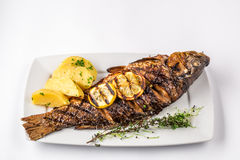 Gegrillte Karpfenfische mit Rosmarinkartoffeln und Zitrone, Abschluss oben Stockfotografie