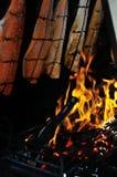 Gegrillte Lachse unter Beschuss Lizenzfreies Stockfoto