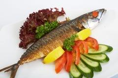 Gegrillte Makrelen-Fische Stockfoto