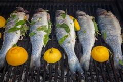 Gegrillte organische Fische Stockfotos
