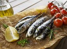 Gegrillte Sardinen mit Kräutern und Zitrone stockbilder