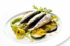 Gegrillte Sardinen mit zuccini Stockbild
