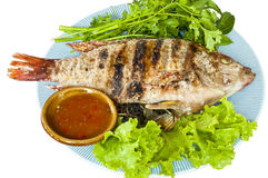 Gegrillte Tubtim Fische trennten. stockbilder