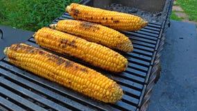 Gegrillter Mais gegrillt auf Feuer Auf einer dunklen Eisentabelle Gegrillter Mais Köstliches Straßenlebensmittel Sommerfest und G lizenzfreies stockfoto
