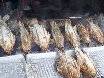 gegrilltes Fisch- und Salz- und Bestandteilkraut, das durch Rollen-machin kocht Stockfotos