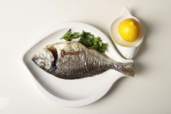 Gegrilltes Fischabendessen Lizenzfreie Stockbilder