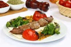Gegrilltes Fleisch kebab Stockbild