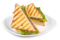 Gegrilltes Käse-Sandwich lizenzfreie stockbilder