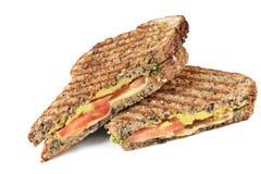 Gegrilltes Sandwich Lizenzfreies Stockbild