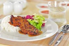 Gegrilltes Schweinefleisch mit Reis Stockfotos