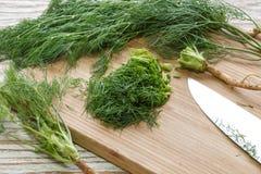 Gehakt de aard organische groen van het dille plantaardige ingrediënt stock afbeelding