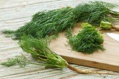 Gehakt de aard organische groen van het dille plantaardige ingrediënt royalty-vrije stock foto