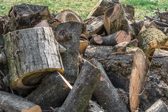 Gehakt hout Royalty-vrije Stock Foto's