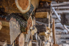 Gehakt hout klaar voor de winter Royalty-vrije Stock Afbeelding