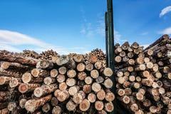 Gehakt houten, woodpile, brandhout - zaagmolen stock afbeelding