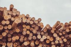 Gehakt houten, woodpile, brandhout - zaagmolen royalty-vrije stock fotografie