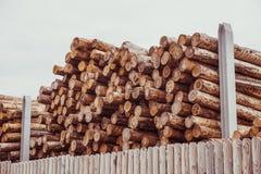 Gehakt houten, woodpile, brandhout - zaagmolen royalty-vrije stock foto's