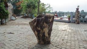 Gehakte boomboomstam bij Sirpur-meer, indore-India Royalty-vrije Stock Afbeeldingen