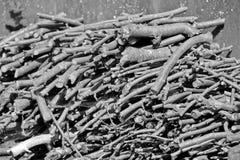 Gehakte boomtakken Gestapeld brandhout royalty-vrije stock foto