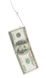 Gehakter Dollar Stockfoto