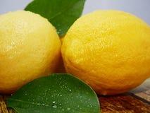 Geheel citroenen en blad Fruitbeeld stock afbeeldingen