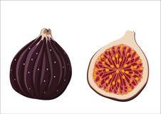 Geheel fig. en de zijn helft Royalty-vrije Stock Fotografie