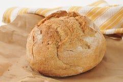 Geheel welk brood Royalty-vrije Stock Foto's