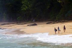Geheim Strand, Kauai, Hawaï stock afbeeldingen