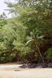 Geheim Strand, Kauapea, Kauai, Hawaï, de V.S. stock afbeelding