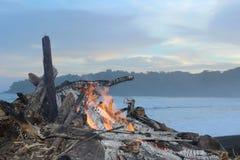 Geheim tropisch strand in de Vreedzame Oceaan royalty-vrije stock foto