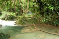 Geheime pool in regenwoud, Agua Azul, Mexico stock afbeelding