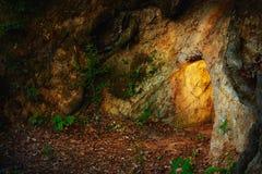 Geheime Steinhöhle im dunklen Wald Stockfotografie
