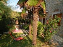Geheime tuin met mediteranian installaties stock foto's