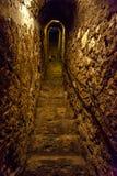 Geheimer schmaler Steintunnel mit Treppe Lizenzfreie Stockbilder