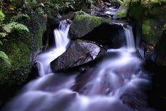 Geheimnisvoller purpurroter Fluss Stockfotos