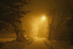 Geheimnisvoller schneebedeckter Pfad Stockbild