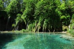 Geheimzinnig blauw paradijs in Plitvice-Meren royalty-vrije stock afbeeldingen