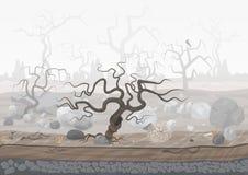 Geheimzinnig bos in mist Donkere griezelige Halloween-landschapsscène Royalty-vrije Stock Foto