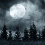 Geheimzinnig bos onder dramatische bewolkte hemel bij volle maannacht Stock Fotografie