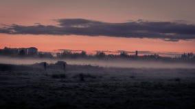 Geheimzinnig landschap van mist op gebied bij schemer in de lente royalty-vrije stock foto