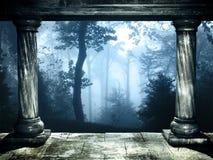 Geheimzinnig landschap van mistig bos Royalty-vrije Stock Afbeeldingen