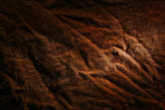 Geheimzinnige Bruine Geweven Achtergrond Stock Afbeelding